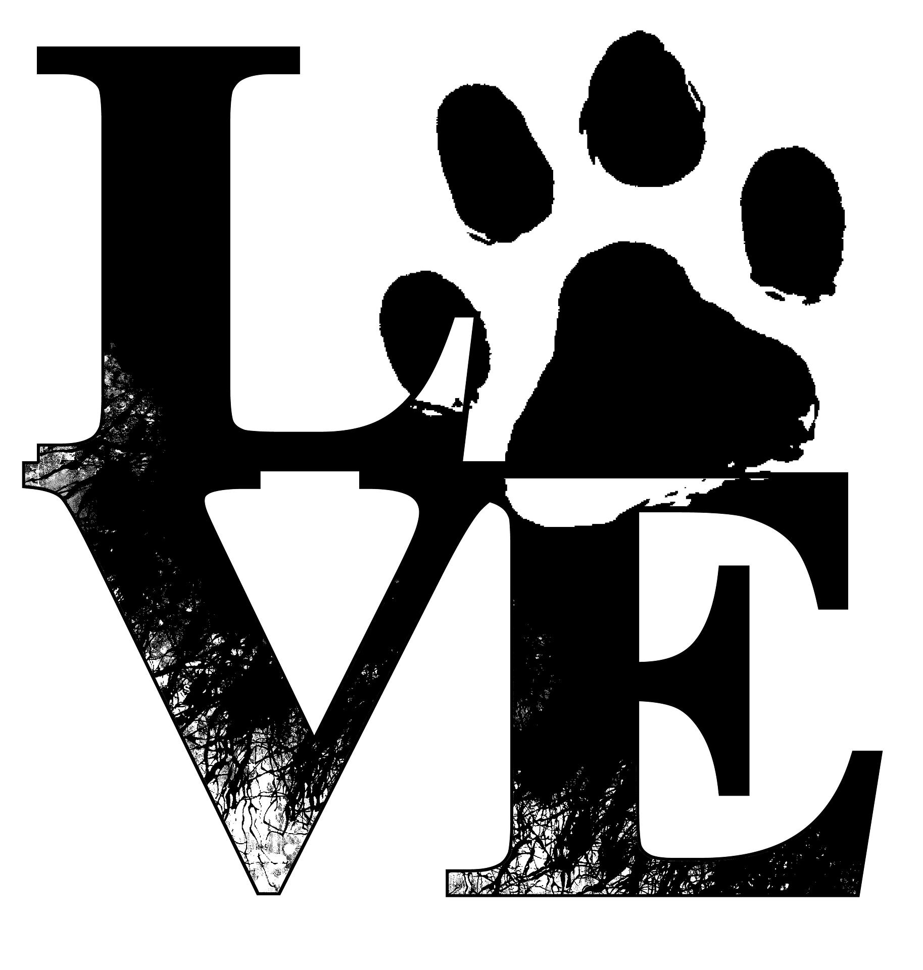 Love - mit Pfote