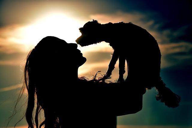 Frau versteht sich mit ihrem Hund